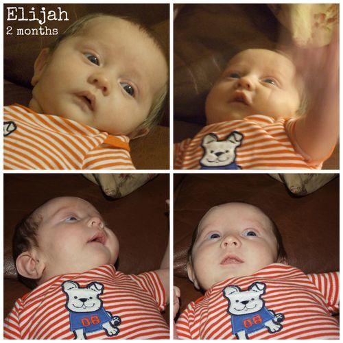 Eli collage